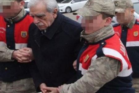 Ahmet Türk: Kayıp düşmemem için koluma girdiler
