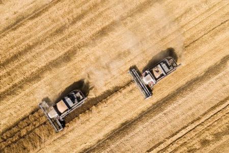 Buğday krizi tırmanıyor: Türkiye, Rus buğdayını engellemeye devam ederse cevap veririz