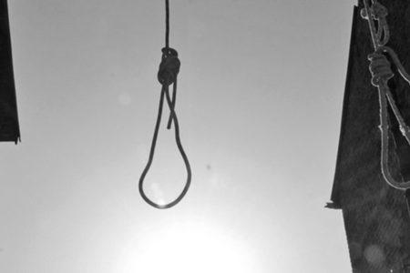 'Almanya'da idam referandumu için sandık kurulamaz'