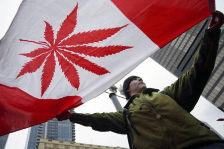 Kanada esrarı yasallaştırmaya hazırlanıyor