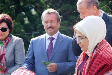 Erdoğan'la çay toplayan Zerrin Güngör yeniden Danıştay Başkanı seçildi