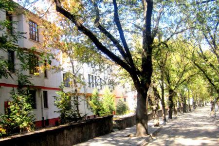 Ankara'nın tarihi mahallesi ranta açıldı