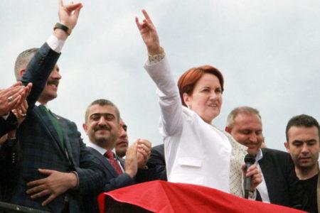 Yeni partide 'bozkurt' işareti yapılamayacak, Türkeş'in resmi asılmayacak
