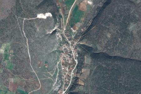 Maden ocağının kapasitesini artırmak için 75 bin ağaç kesilecek