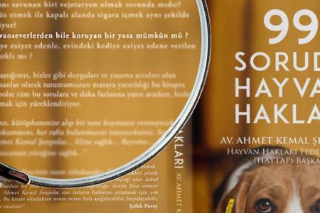 Köpeğe eziyet eden zanlıya 'hayvan hakları' okuma cezası verildi