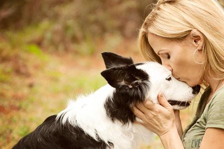 """""""Köpek sahiplerinin kalp krizinden ölme riski daha az"""""""
