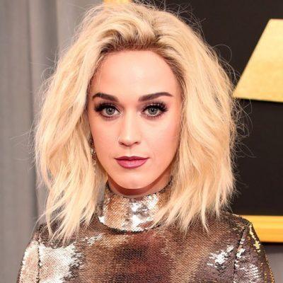 Katy Perry'nin takıntılı hayranı ülkesine gönderiliyor
