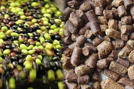 'TSK'da at etinden sonra küspe yağı skandalı' iddiası